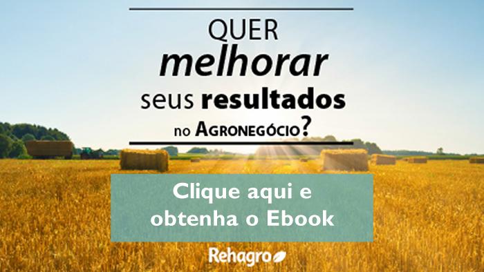Faça o download do ebook