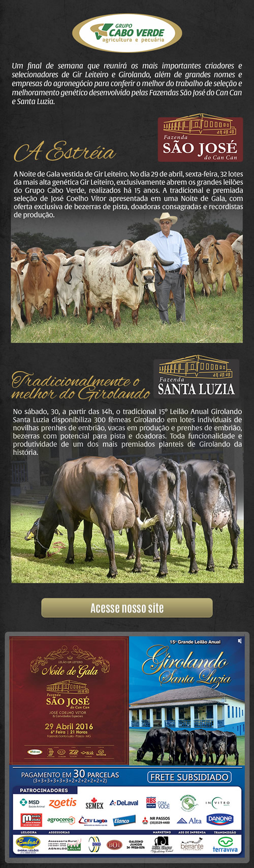Leilões Fazenda Santa Luzia 2016