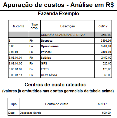 Exemplo de relatório de gestão econômica